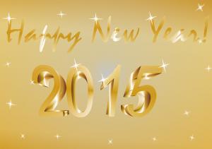 Objectifs 2015 et bonne année 2015