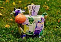 Tirelire vache pour grande épargne